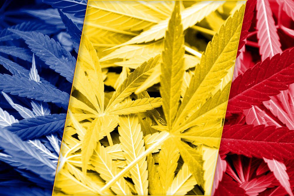 Colombia the new California of cannabis?